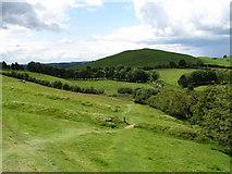 N5877 : Field banks on Carnbane East, Lochcrew by Eric Jones