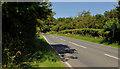 J4777 : The Crawfordsburn Road, Clandeboye (2) by Albert Bridge