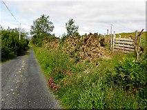 G7790 : Road at Gortnacart by Kenneth  Allen