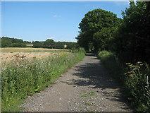 TQ4968 : Byway near Hockenden by David Anstiss