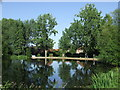 TQ4598 : Theydon Bois pond by Malc McDonald