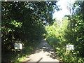 TQ4569 : The Drive, Scadbury Park by David Anstiss