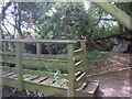 SO9842 : Bridge over the boundary by Liz Stone