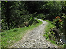 NX4465 : A path along the top of an old dam looking south by Ann Cook