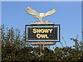 NZ2376 : 'Snowy Owl' pub sign by Andrew Curtis