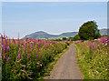 NO1204 : Fife and Kinross Railway by William Starkey
