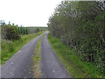 G7879 : Road at Drumrainy by Kenneth  Allen