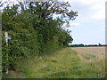 TM2451 : Footpath to White Foot Lane by Adrian Cable