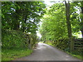 NY6407 : Driveway to Ghyll Bank at Raisbeck by Rod Allday
