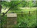 SE1427 : Milestone, Judy Woods by Christine Johnstone