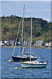 NM8529 : Yachts in Oban Bay by The Carlisle Kid