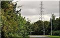 J2969 : Pylon and power lines, Dunmurry (4) by Albert Bridge