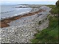 G6148 : Stranded seaweed by Jonathan Wilkins