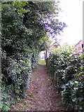 TM4160 : Footpath to Mill Road by Geographer