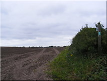 TM4159 : Footpath to Low Road, Friston by Adrian Cable