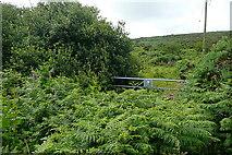 SW4837 : Track near Beagletodn by Graham Horn