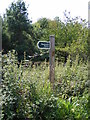 TM2950 : Restricted Byway to Shottisham sign by Adrian Cable