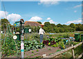 SU4981 : Pot Head Scarecrow, East Ilsley by Des Blenkinsopp