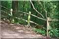 TQ1238 : Fence by John Salmon
