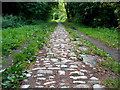 SU4792 : Cobblestones on Milton Lane by Des Blenkinsopp