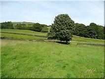 SE0026 : Hebden Royd Footpath 17, Mytholmroyd by Humphrey Bolton