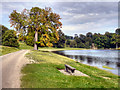 SE2769 : Path by the Lake, Studley Royal Water Garden by David Dixon