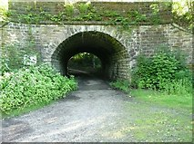 SE0026 : Railway Bridge MVN2 133, Roger Gate, Mytholmroyd by Humphrey Bolton