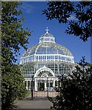 SJ3787 : Sefton Park Palm House, Liverpool by Paul Harrop