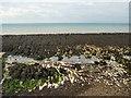 TQ3701 : Rock Pools - Rottingdean beach by Paul Gillett