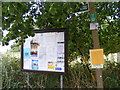 TM2348 : Restricted Byway sign & Great Bealings Village Notice Board by Adrian Cable