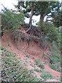 TM1433 : River Bank Erosion by Roger Jones