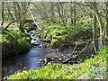 SE1581 : River Burn near Gollinglith Foot by Maigheach-gheal