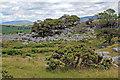 SD5579 : Newbiggin Crags by K  A