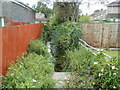 ST3487 : Unnamed reen, Thompson Avenue, Newport by Jaggery
