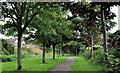 J5878 : Railway path, Donaghadee (4) by Albert Bridge