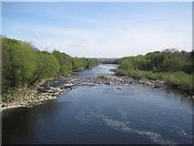 NZ1164 : River Tyne from Wylam Bridge by Les Hull