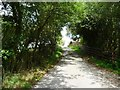 SO3496 : Lane dropping down to Rock Farm by Christine Johnstone