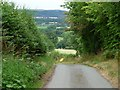 SO3593 : Arbour Lane by Christine Johnstone