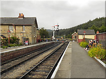 SE8191 : Levisham Station by David Dixon