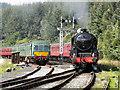 SE8191 : 44767 George Stephenson Approaching Levisham by David Dixon