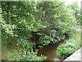 SO3475 : River Redlake [1] by Christine Johnstone