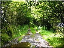 SS7237 : Green lane, North Twitchen by John Courtney