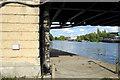 SU8586 : Underneath Marlow Suspension Bridge, Marlow, Buckinghamshire by Christine Matthews