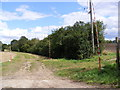 TM2361 : Footpath to Mill Lane Byway by Adrian Cable