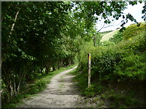 TQ2411 : Footpath junction south of Fulking by Shazz
