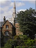 TQ3179 : Buildings viewed from Imperial War Museum Gardens, Lambeth Road SE1 by Robin Sones