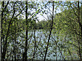 TL3744 : Private fishing lake by Hugh Venables