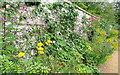 SU8695 : Walled garden at Hughenden Manor by Graham Horn