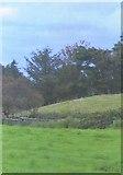 G2030 : Countryside scene north of Killala by C Michael Hogan