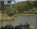 TA0135 : Folly Lake at Risby Park by Paul Harrop